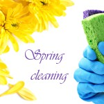 bigstock-Spring-cleaning-concept-Glov-30312806