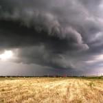 vihar1