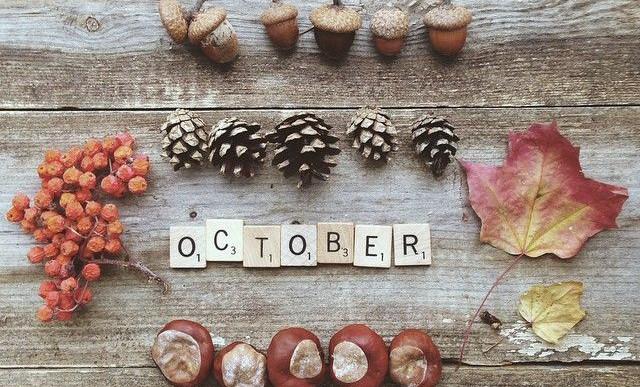 Hello őszi szünet