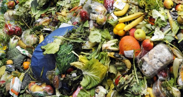 Nincs több élelmiszerpazarlás Franciaországban