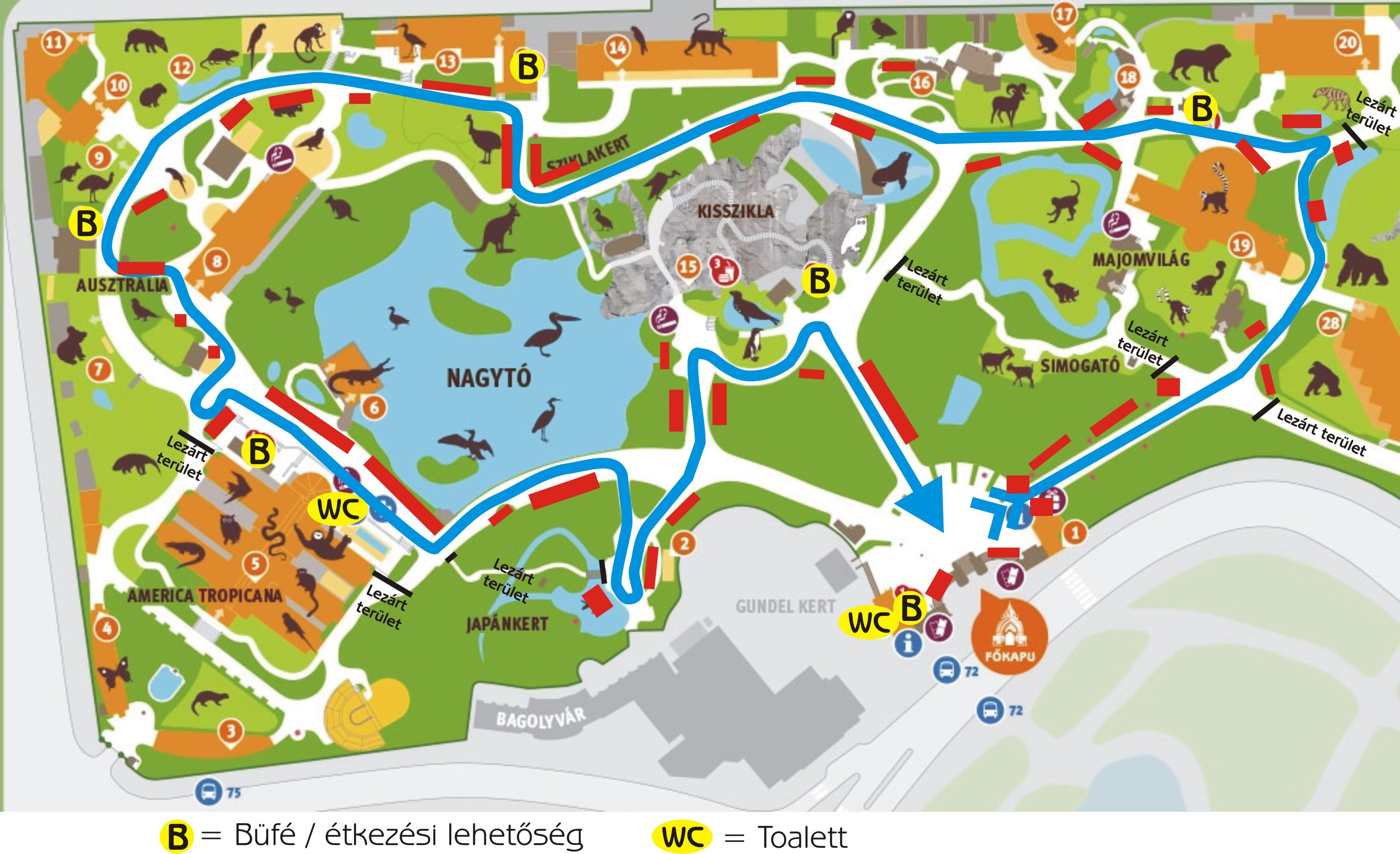 budapest állatkert térkép Sárkányok Éjszakái az Állatkertben | Newscafe budapest állatkert térkép