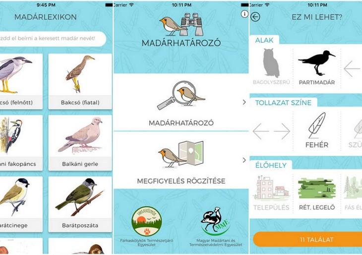 Madárhatározó applikáció tarol a magyar piacon