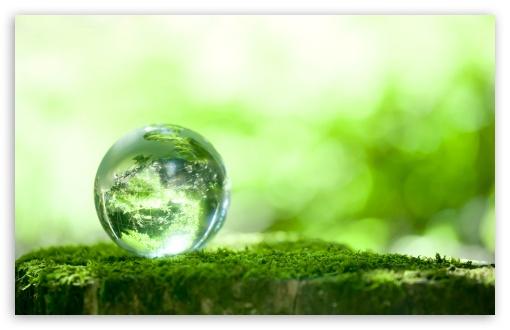 3+1 zöld technológia, ami megmentheti a Földet