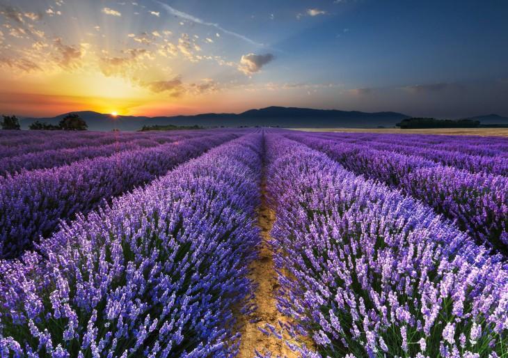10 bámulatos hely Magyarországon, amiről el sem hinnéd, hogy létezik
