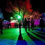 koncert-20130827-594-budapest-park2