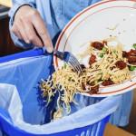 Food-waste-1024x683