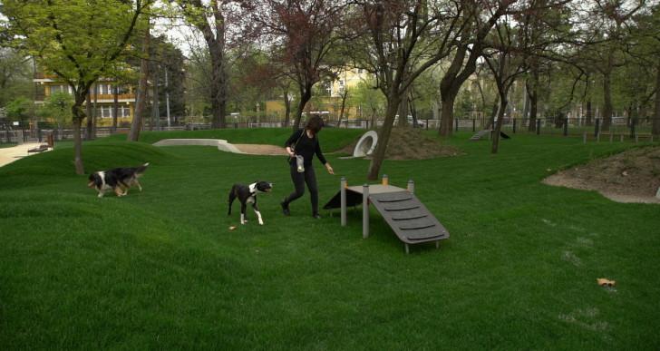 Kipróbáltuk a városligeti kutyás élményparkot