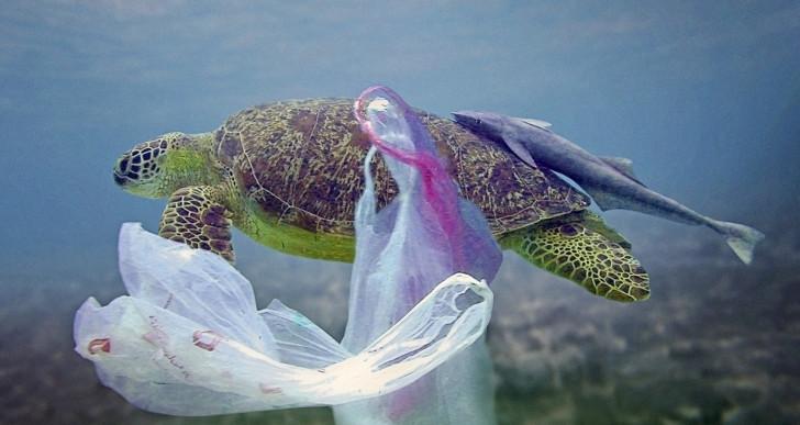 Viszlát, egyszer használatos műanyagok?