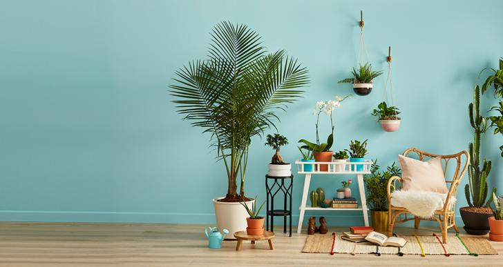 Óriási dologra készül az Ikea: hamarosan visszavásárolja a megunt bútorokat a svéd áruházlánc