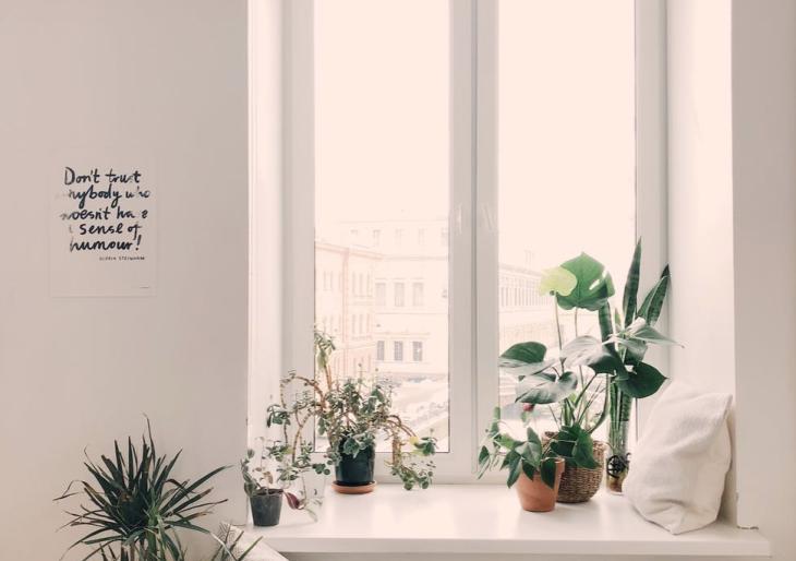 Ablaknyitás helyett: így őrizd meg a lakás levegőjét tisztán és egészségesen
