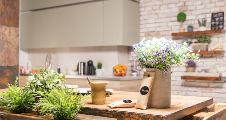 5 öko dolog, amit mindenképp szerezz be az egészséges otthonért
