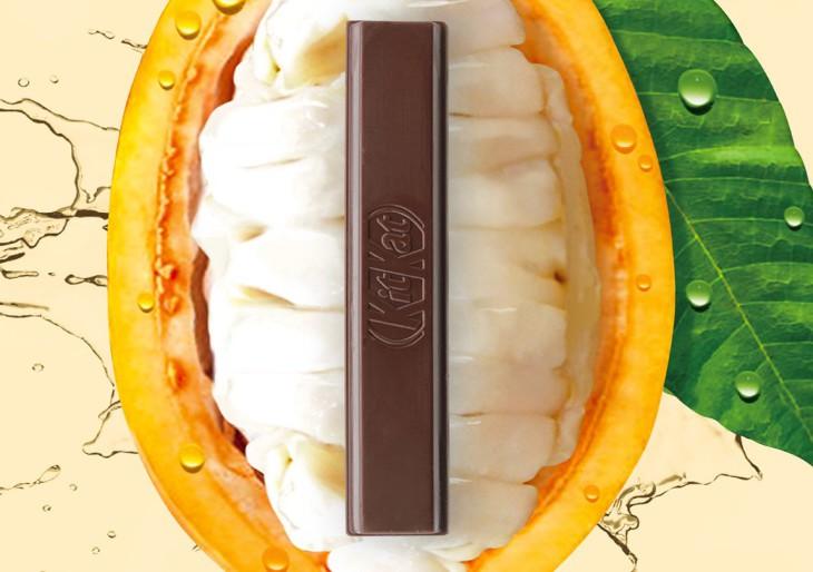 Feltalálták a természetesen édes csokit: hozzáadott cukor nem is kell bele