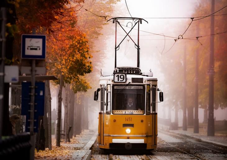 Gyönyörű fotók az ősz színeiben pompázó Budapestről