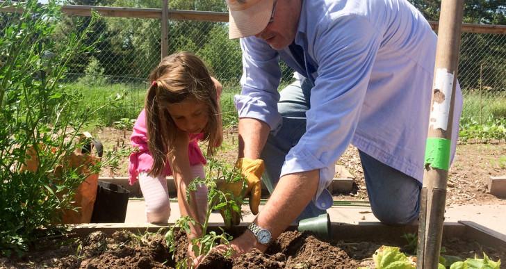 3 tipp, ha gyerekkel kertészkednél