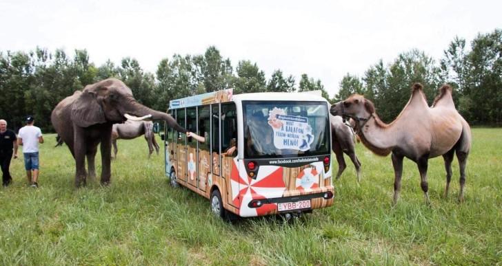Megnyílt hazánk első autós szafari parkja