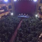 koncert növényeknek
