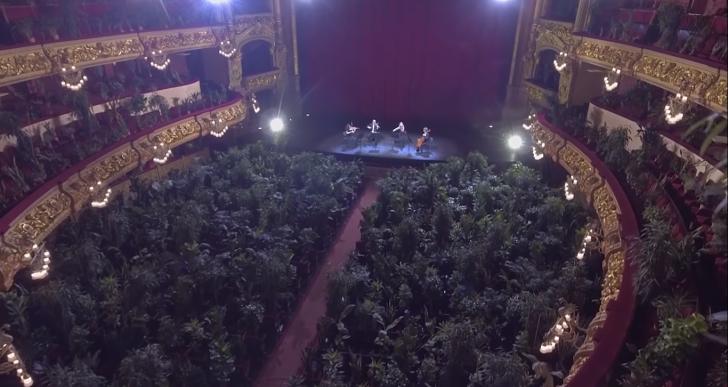 Növényeknek adtak koncertet Barcelonában