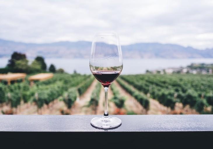 Hatalmas sikert értek el magyar borászok a világ legrangosabb borversenyén
